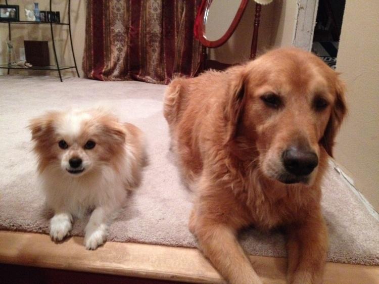 Milo & Charlie