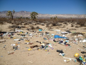 Along one of our walks out in beautiful desert, an unfortunate sight!