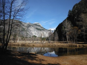 View from a picnic area in the Yosemite Valley