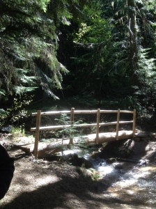 A bridge along our hiking trail