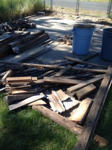 Wood pile full of potential