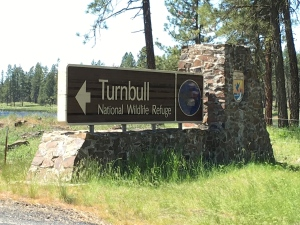 Finally made a turn to go see Turnbull National Wildlife Refuge